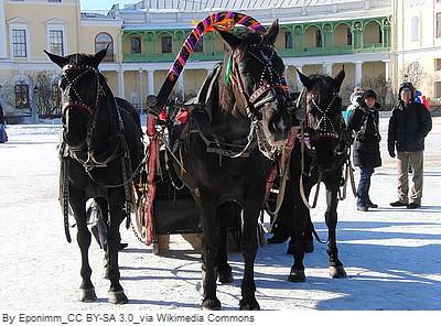 palais youssoupov visite